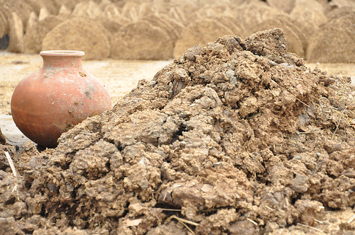 Dung destined to be made into fuel
